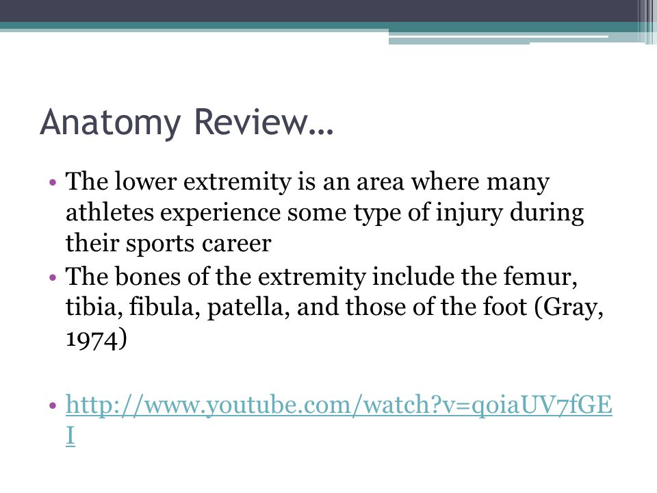 Anatomy Review… The lower extremity is an area where many athletes experience some type of injury during their sports career.