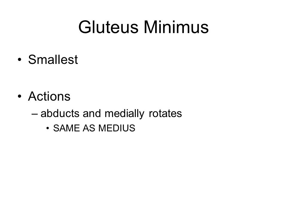 Gluteus Minimus Smallest Actions abducts and medially rotates