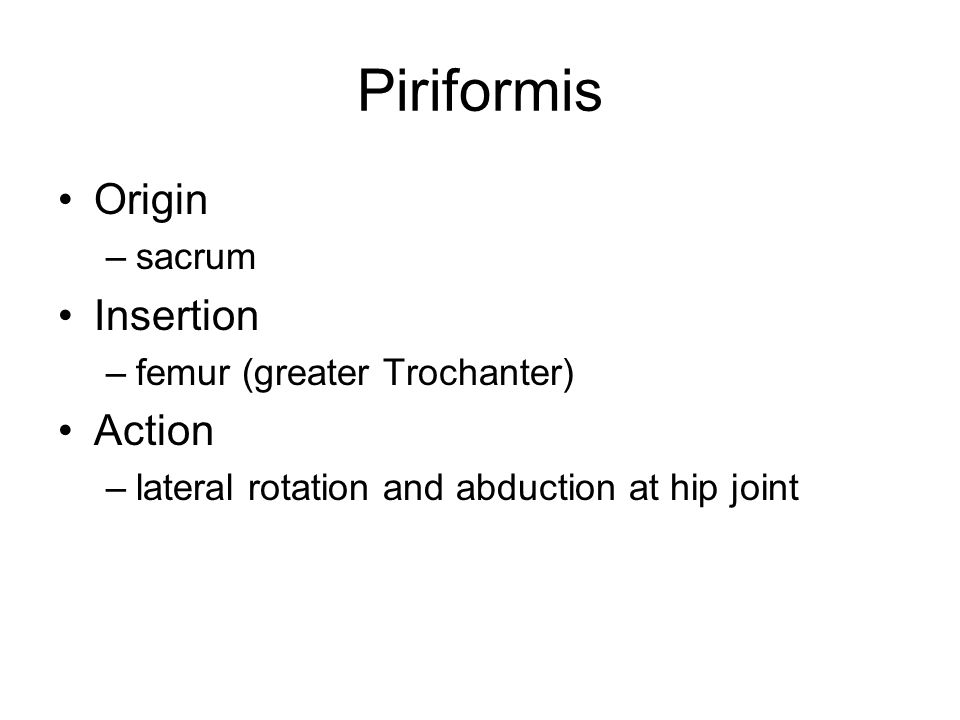 Piriformis Origin Insertion Action sacrum femur (greater Trochanter)