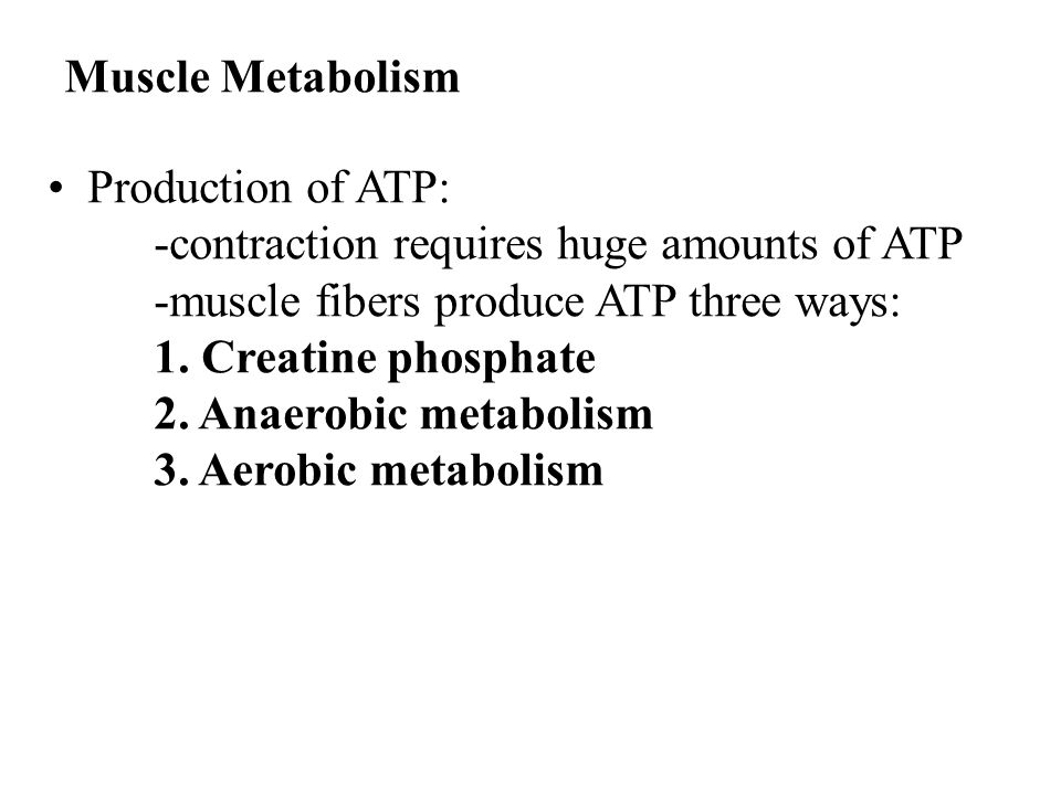Muscle Metabolism Production of ATP: -contraction requires huge amounts of ATP. -muscle fibers produce ATP three ways: