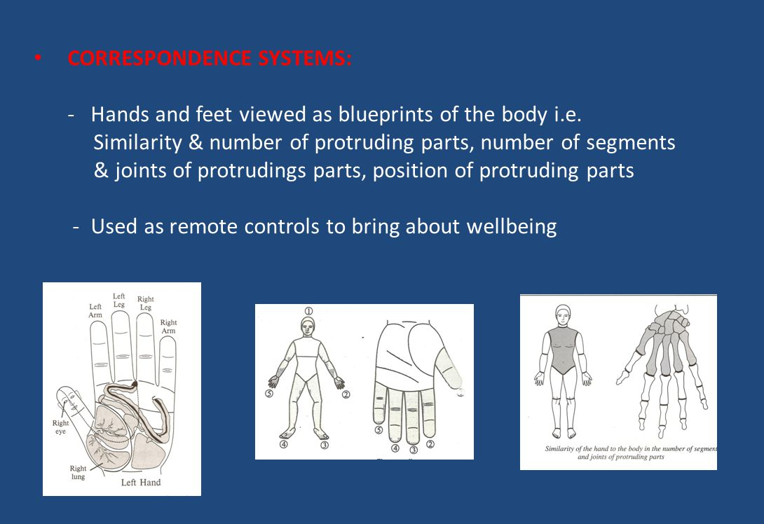 CORRESPONDENCE SYSTEMS: - Hands and feet viewed as blueprints of the body i.e. Similarity & number of protruding parts, number of segments & joints of protrudings parts, position of protruding parts - Used as remote controls to bring about wellbeing
