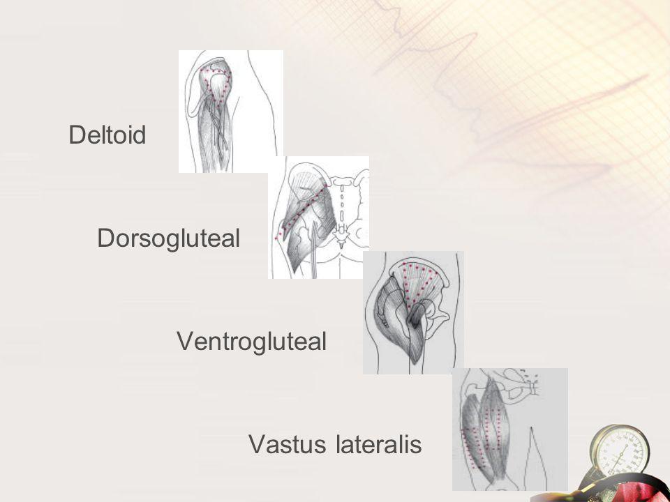 Deltoid Dorsogluteal Ventrogluteal Vastus lateralis