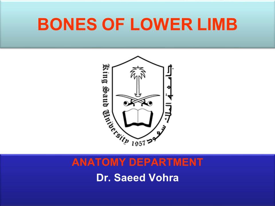 BONES OF LOWER LIMB ANATOMY DEPARTMENT Dr. Saeed Vohra