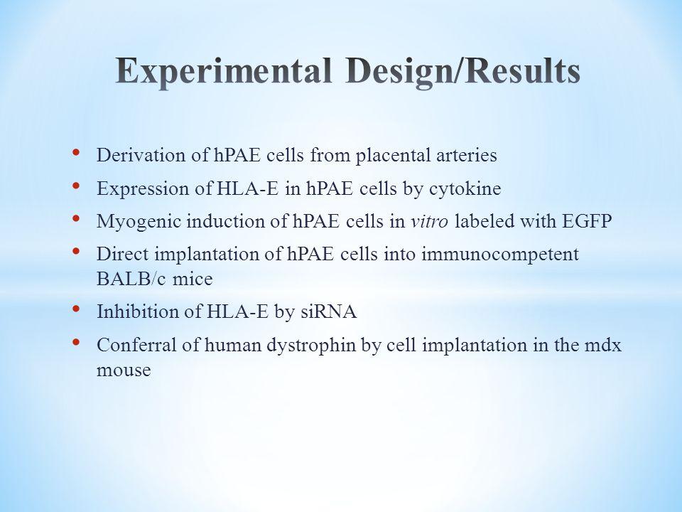 Experimental Design/Results
