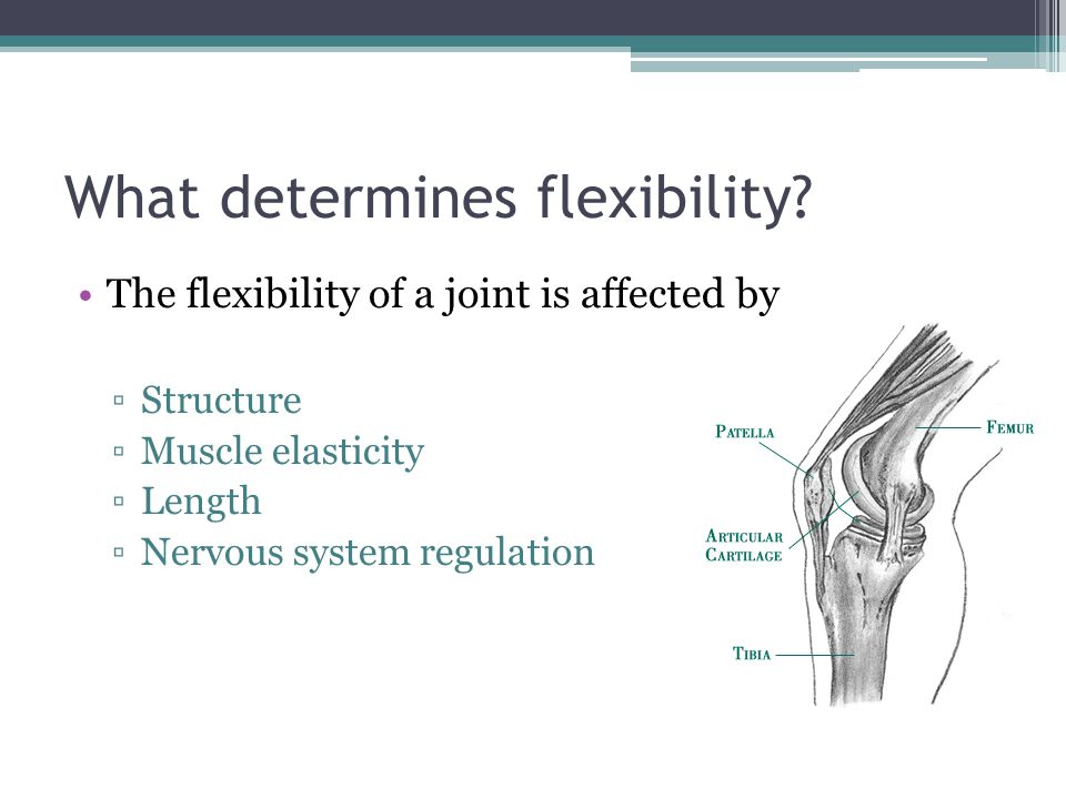 What determines flexibility