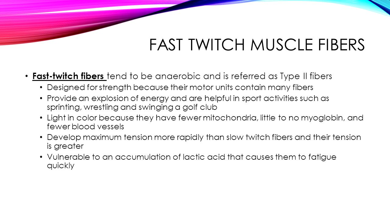 how to develop type 2 muscle fibers