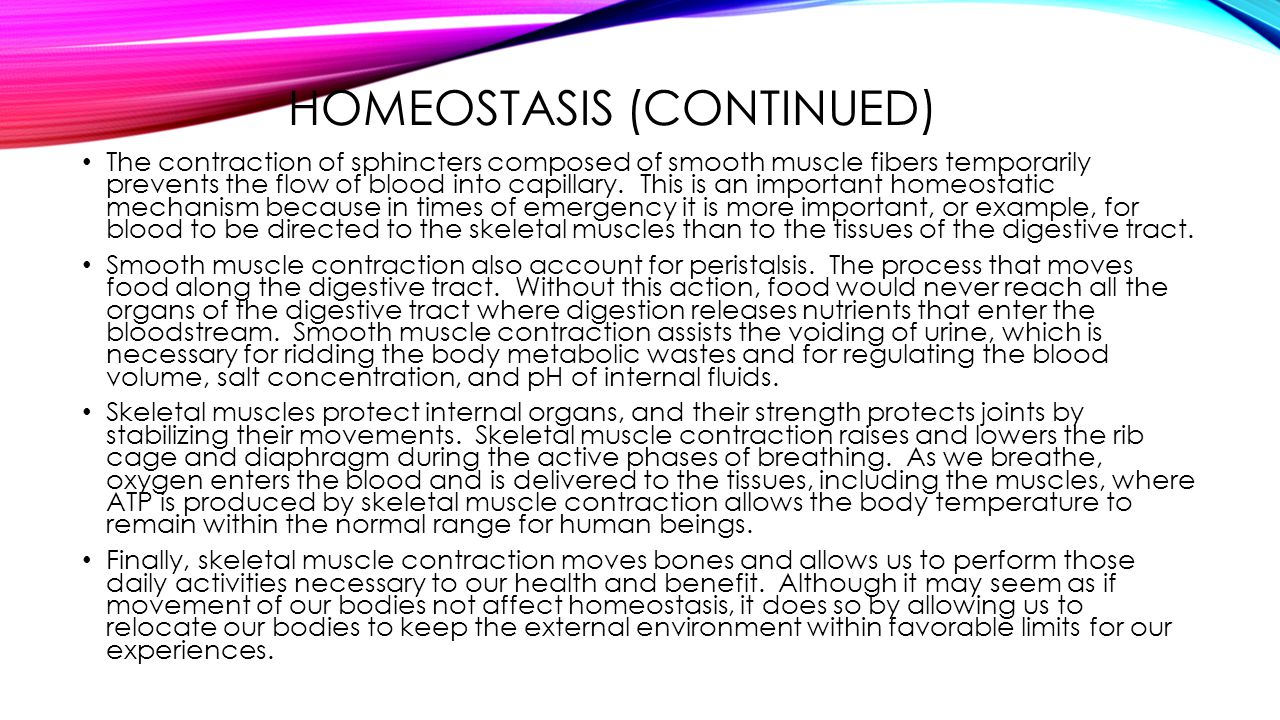 Homeostasis (Continued)