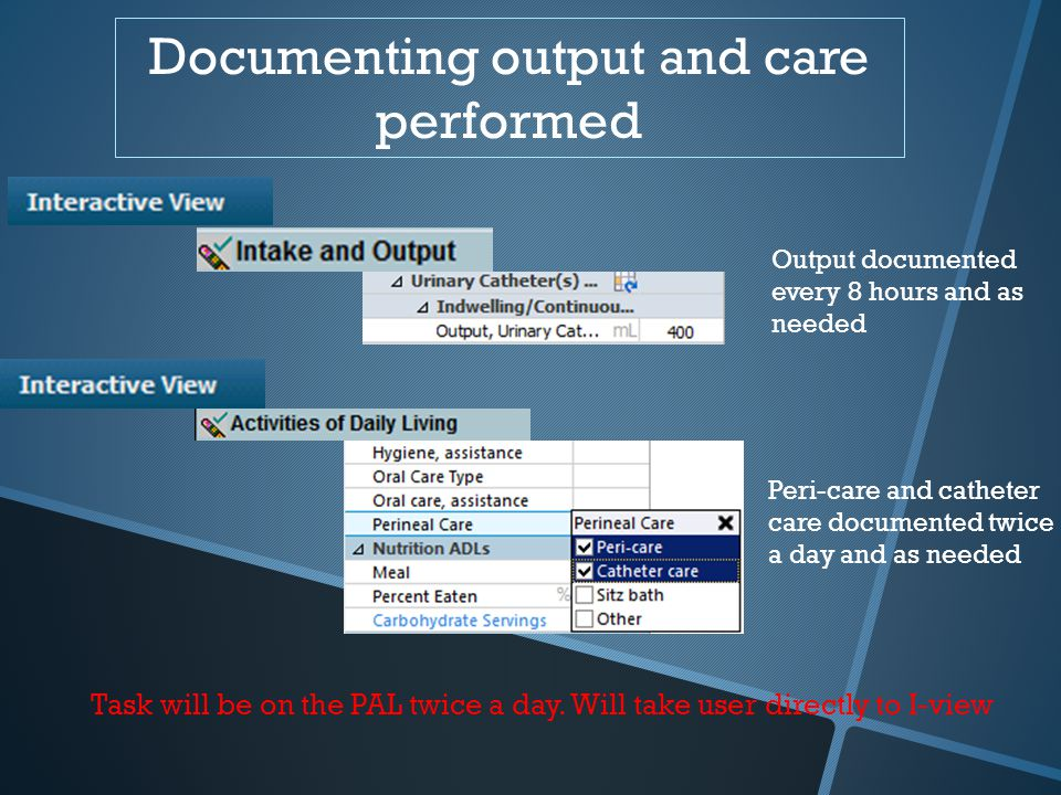 Documenting output and care performed