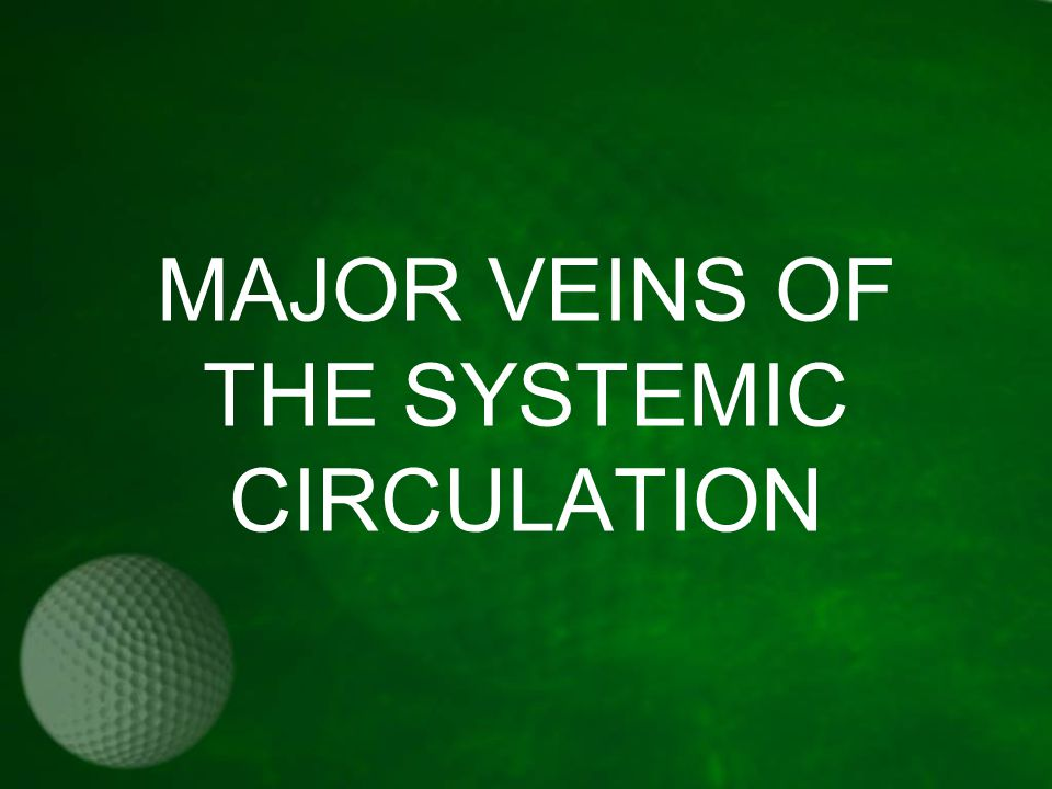 MAJOR VEINS OF THE SYSTEMIC CIRCULATION