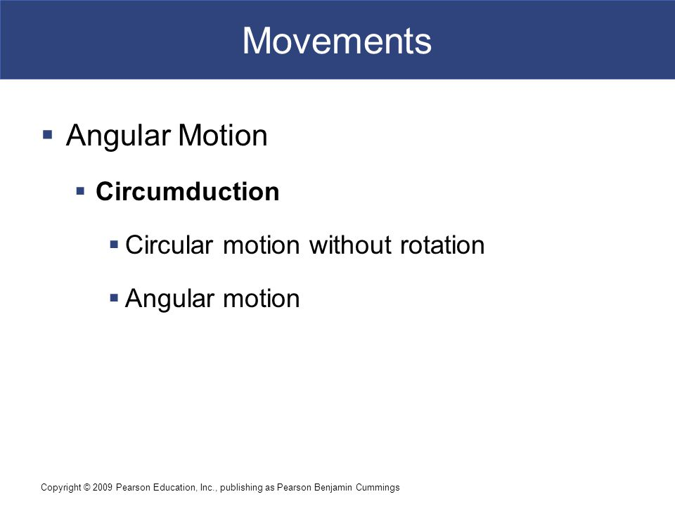 Movements Angular Motion Circumduction