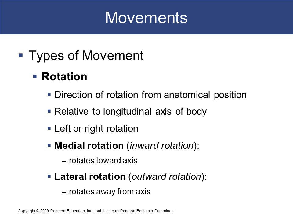 Movements Types of Movement Rotation