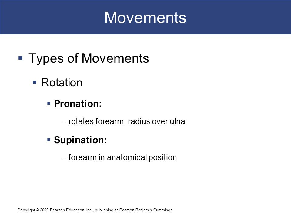 Movements Types of Movements Rotation Pronation: Supination: