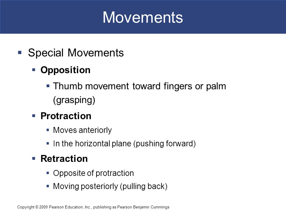 Movements Special Movements Opposition