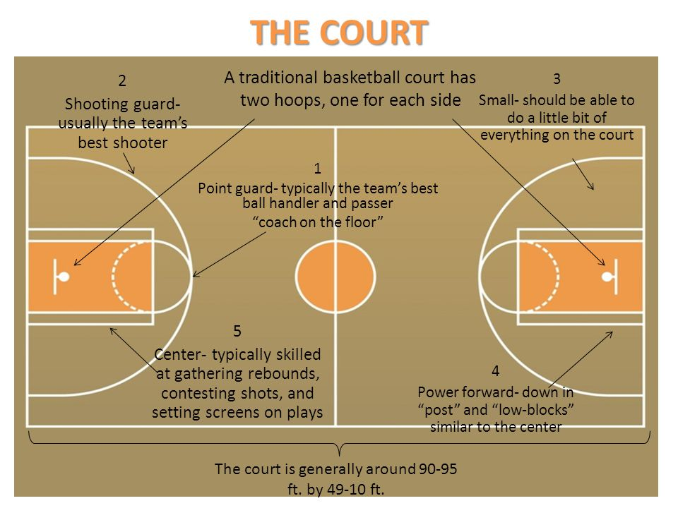 THE COURT A traditional basketball court has two hoops, one for each side. 2. Shooting guard- usually the team's best shooter.