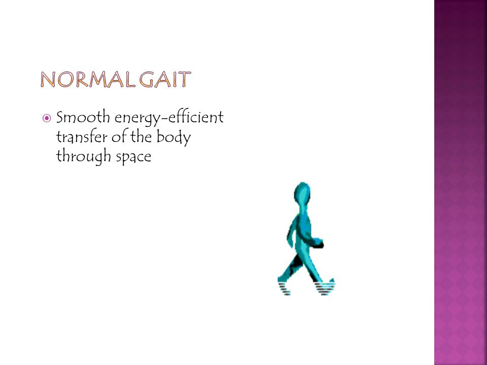 Normal Gait Smooth energy-efficient transfer of the body through space