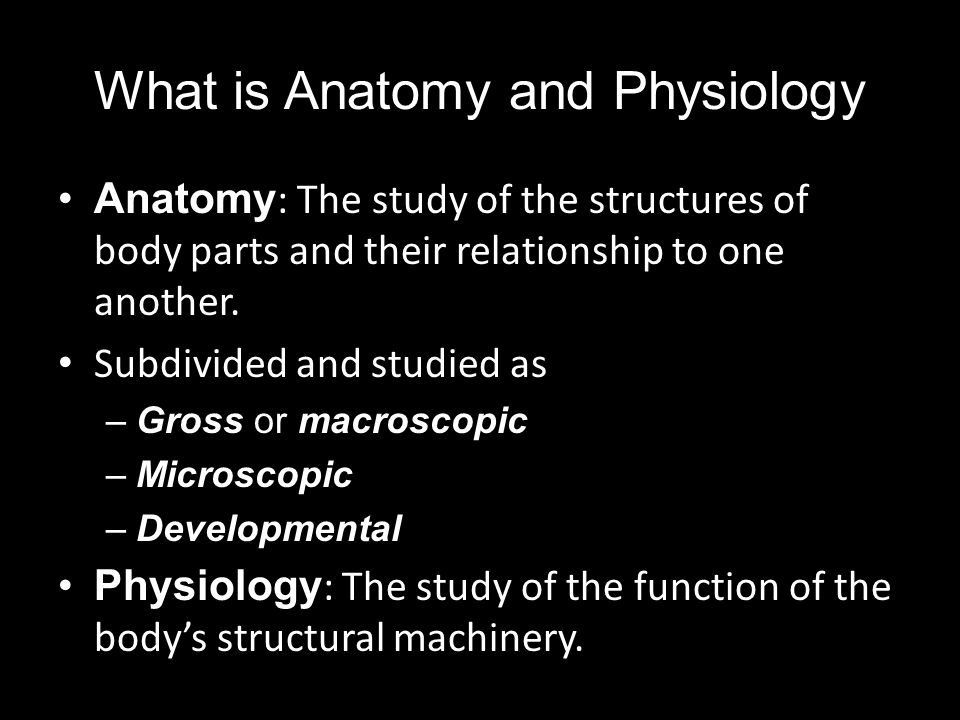 chapter 1 human body an orientation. - ppt download, Human Body