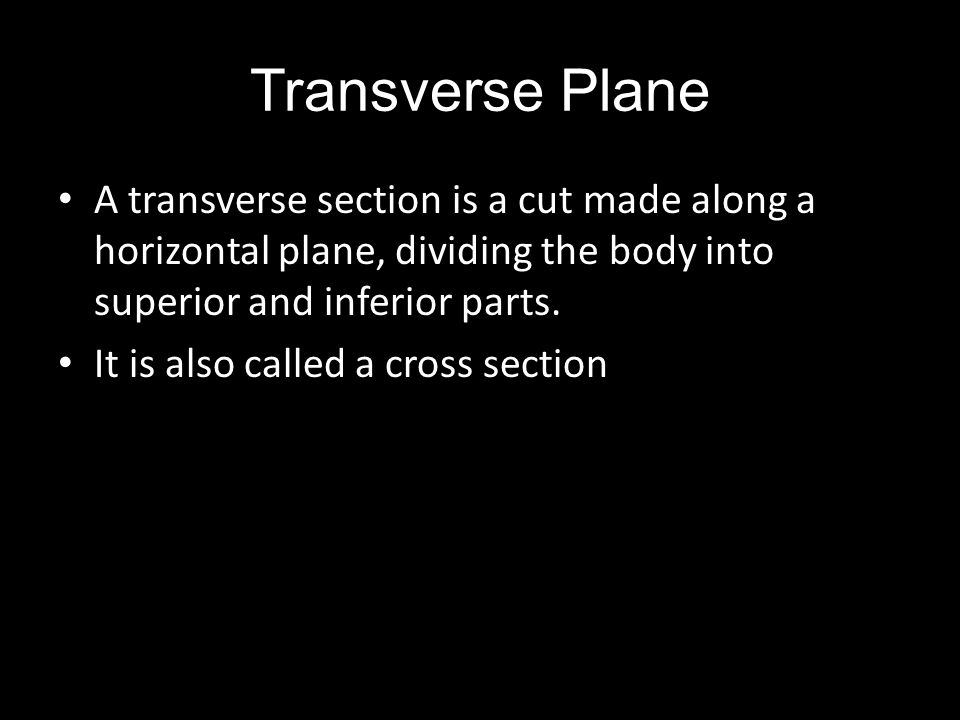 Transverse Plane A transverse section is a cut made along a horizontal plane, dividing the body into superior and inferior parts.
