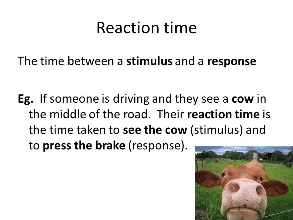Reaction time The time between a stimulus and a response