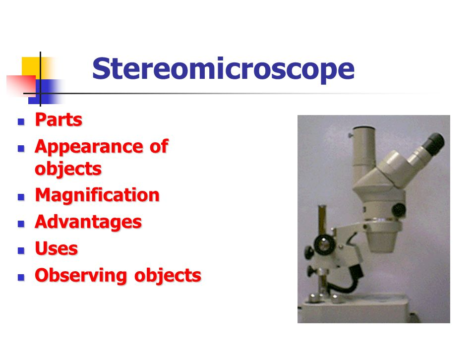 Stereomicroscope Parts Appearance of objects Magnification Advantages