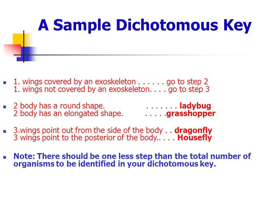 A Sample Dichotomous Key