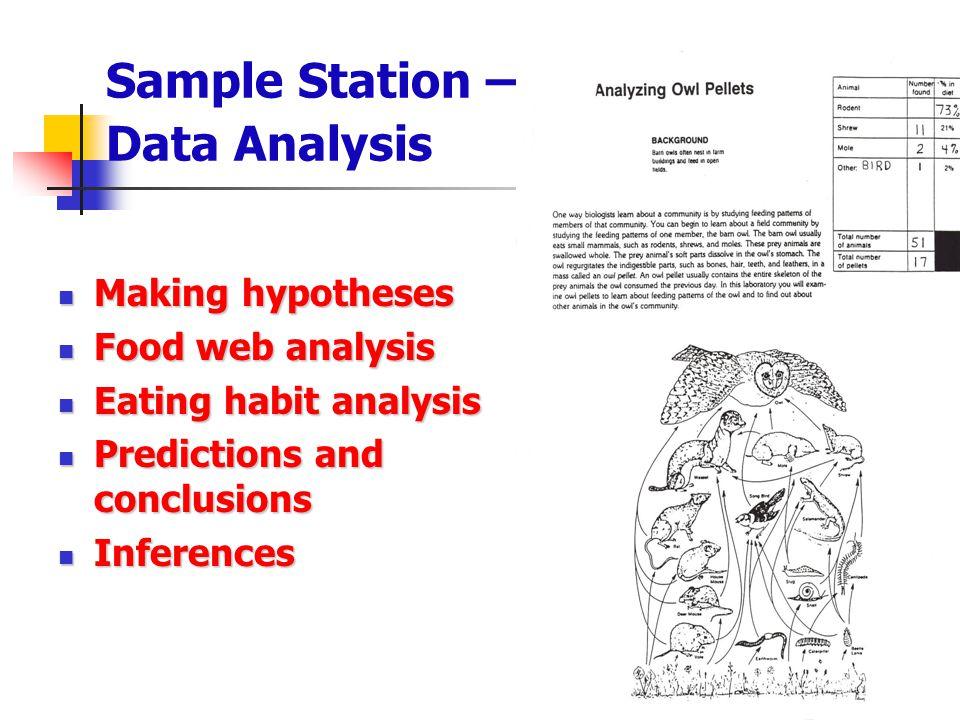Sample Station – Data Analysis