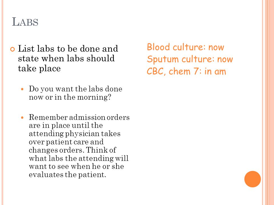 Labs Blood culture: now