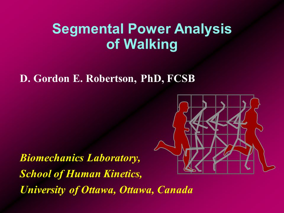 Segmental Power Analysis of Walking