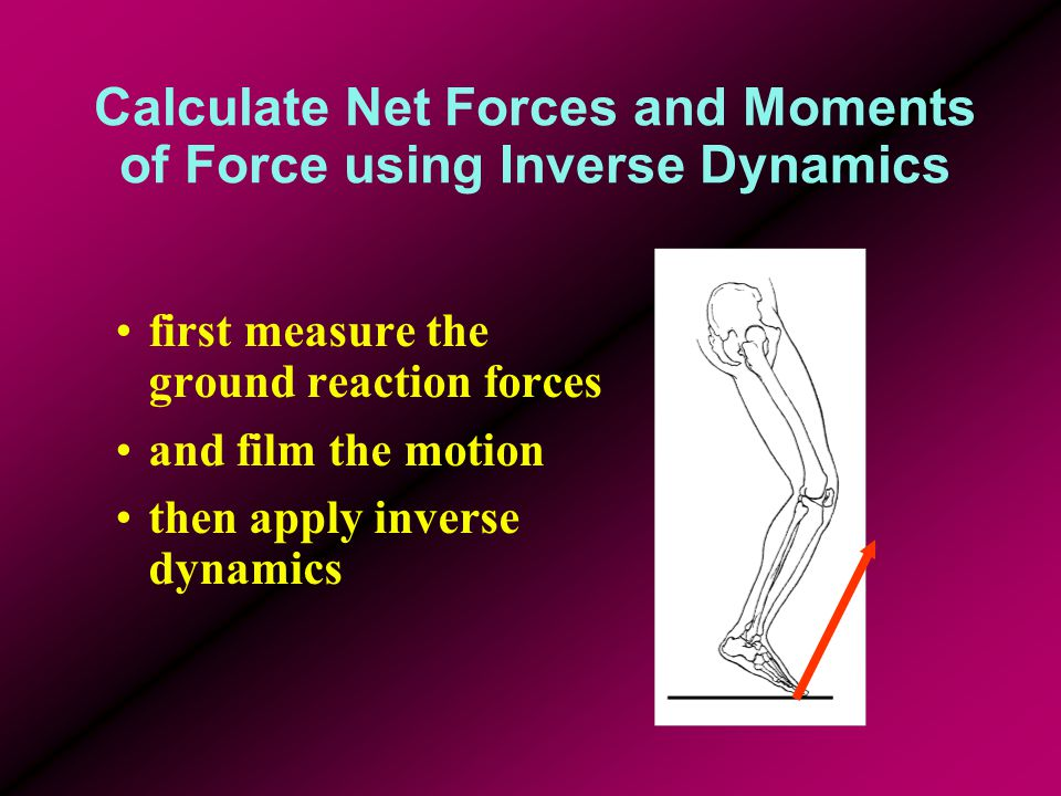 Calculate Net Forces and Moments of Force using Inverse Dynamics