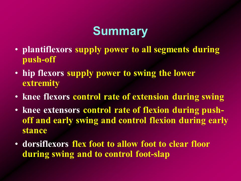 Summary plantiflexors supply power to all segments during push-off