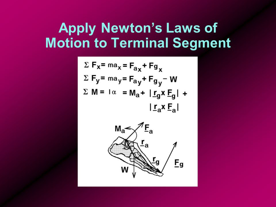 Apply Newton's Laws of Motion to Terminal Segment