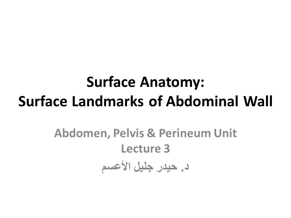 Surface Anatomy: Surface Landmarks of Abdominal Wall