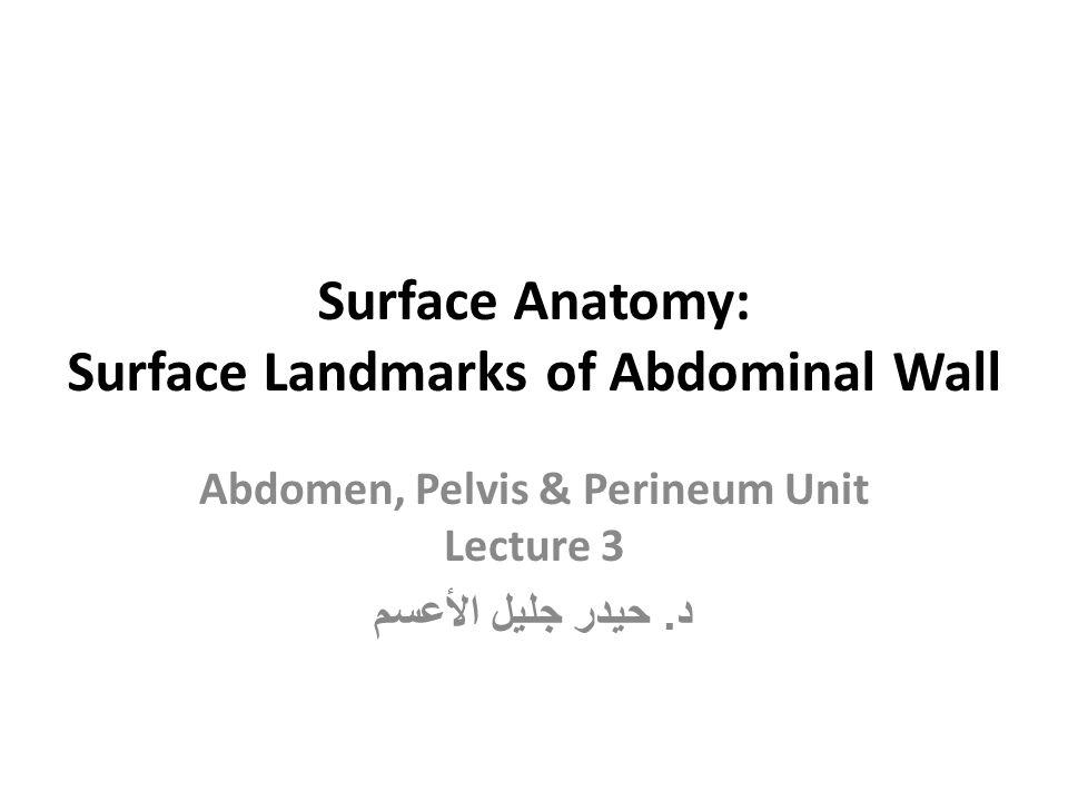Surface Anatomy: Surface Landmarks of Abdominal Wall