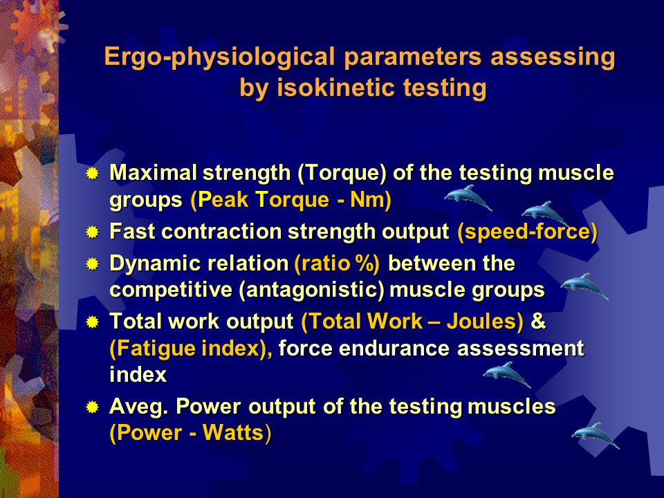 Ergo-physiological parameters assessing by isokinetic testing