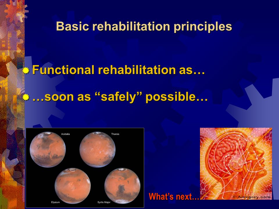 Basic rehabilitation principles