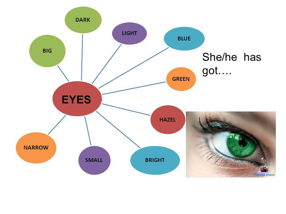 She/he has got…. EYES DARK LIGHT BLUE GREEN HAZEL BIG SMALL BRIGHT