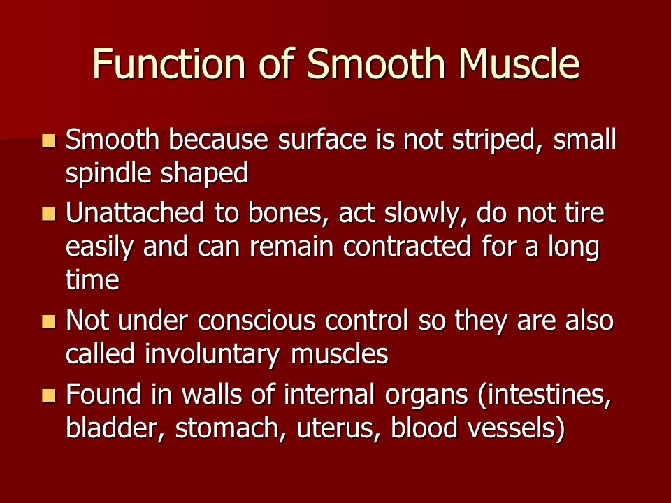 Function of Smooth Muscle