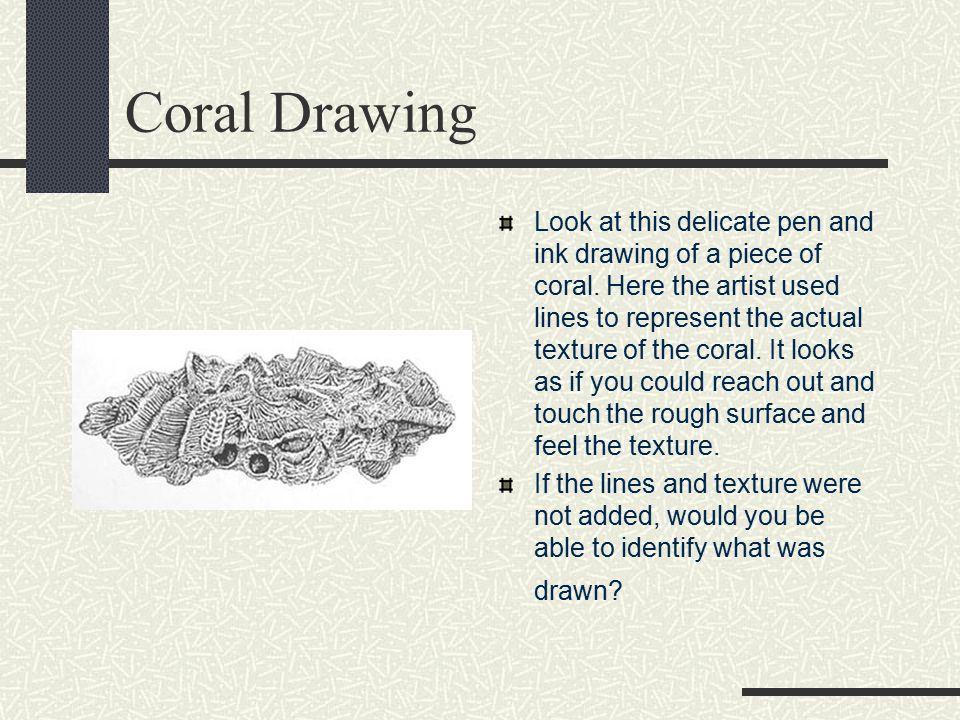Coral Drawing