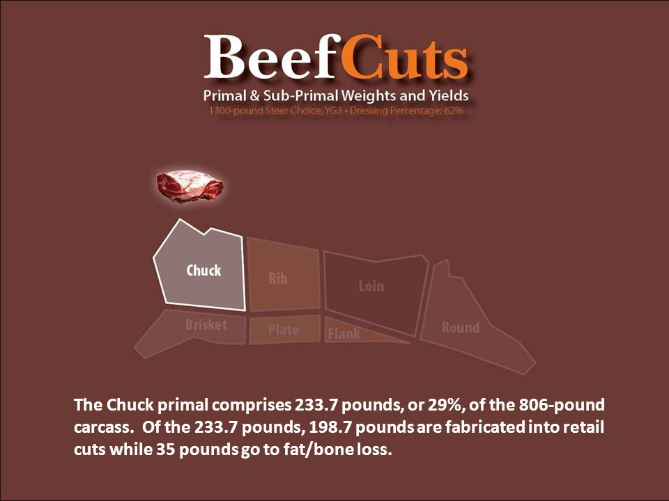 The Chuck primal comprises 233