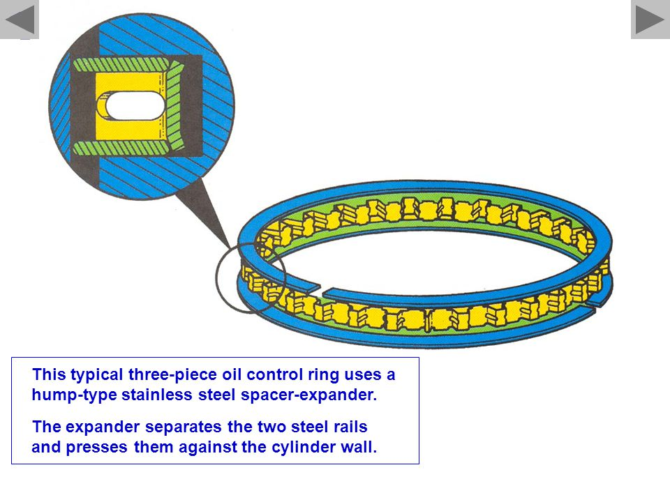 This typical three-piece oil control ring uses a hump-type stainless steel spacer-expander.