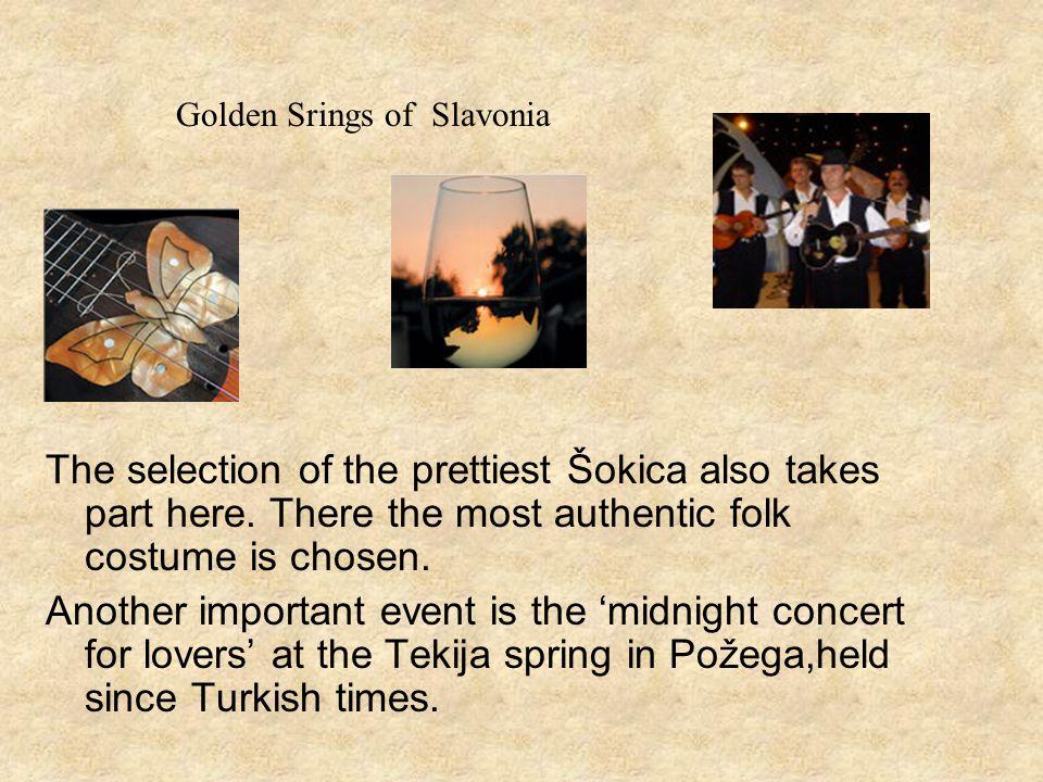 Golden Srings of Slavonia