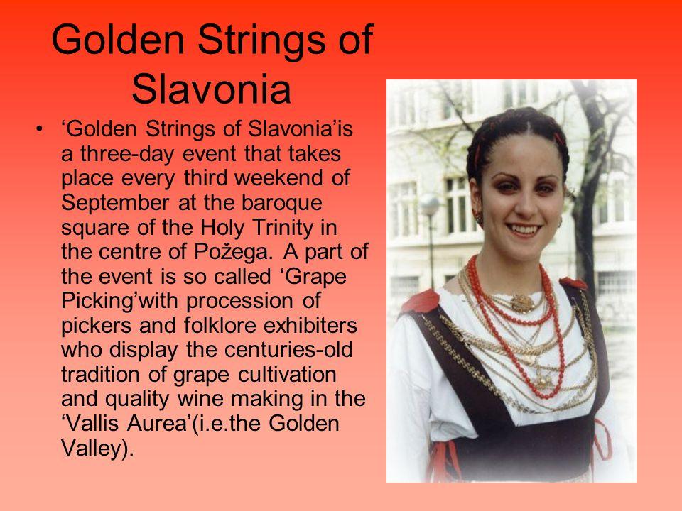 Golden Strings of Slavonia