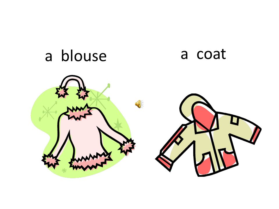 a coat a blouse