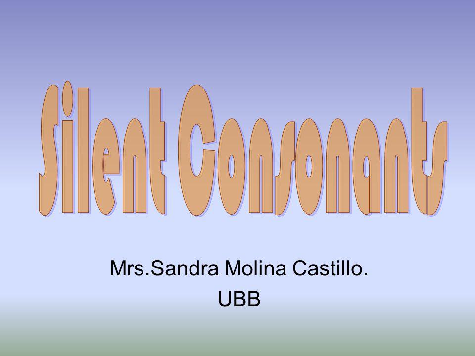 Mrs.Sandra Molina Castillo. UBB