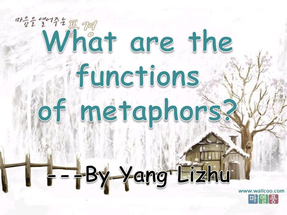 What are the functions of metaphors