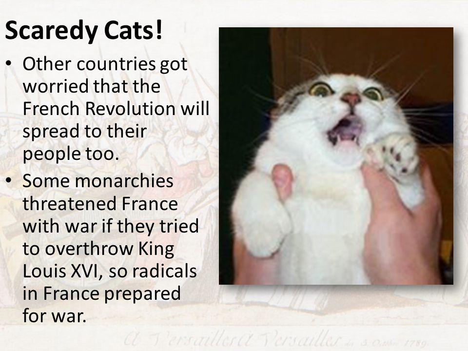 Scaredy Cats! Other countries got worried that the French Revolution will spread to their people too.