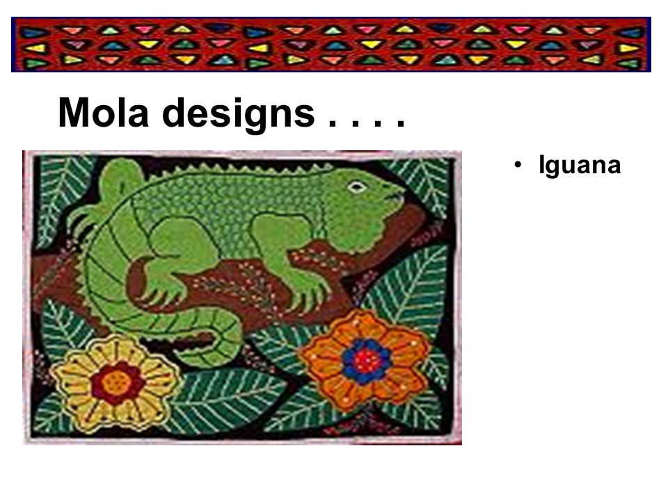 Mola designs . . . . Iguana