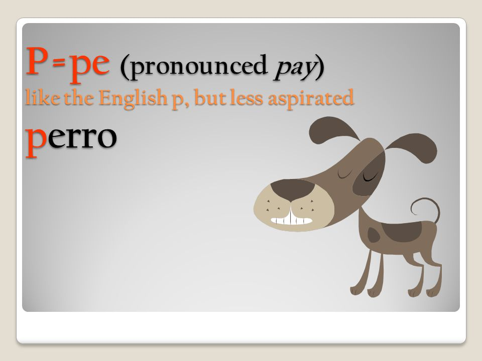 P=pe (pronounced pay) like the English p, but less aspirated perro