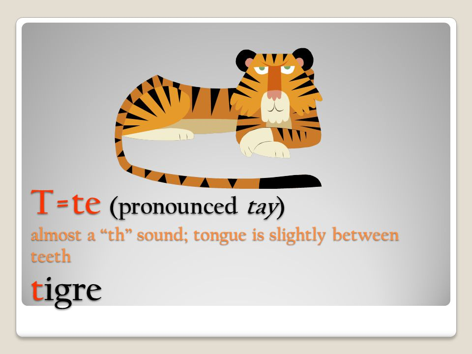T=te (pronounced tay) almost a th sound; tongue is slightly between teeth tigre