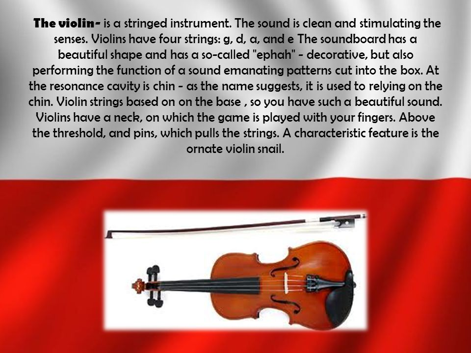 The violin- is a stringed instrument
