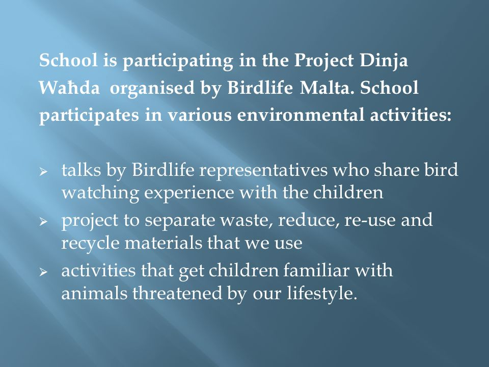 School is participating in the Project Dinja